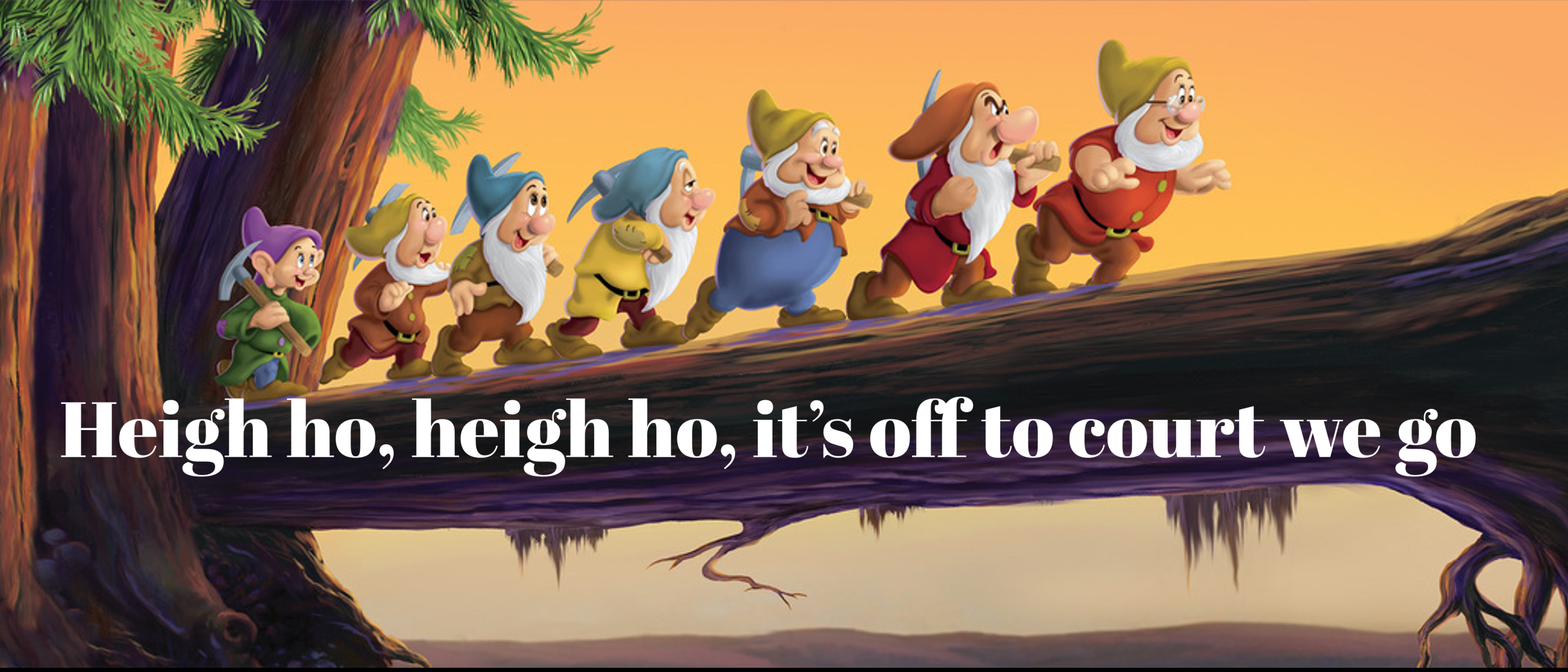 Heigh Ho Heigh Ho It S Off To Court We Go Cash Flow