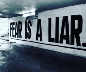 Fear and proactivity
